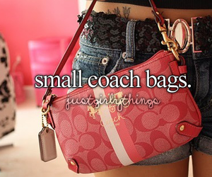 quote, coach, and fashion image