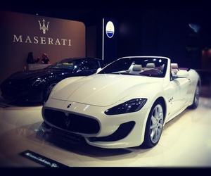 car, maserati, and luxury image