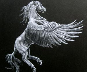 pegasus wings image