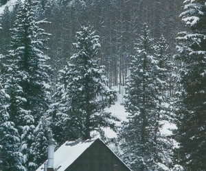 winter, mountains, and cottage image