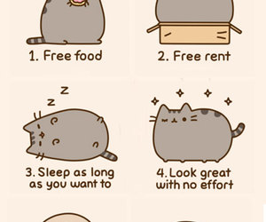 cat, funny, and pusheen image
