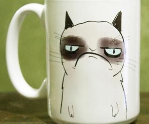 cat, grumpy cat, and cup image