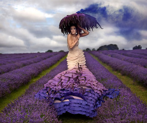 purple, lavender, and dress image