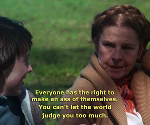 harold and maude and movies image