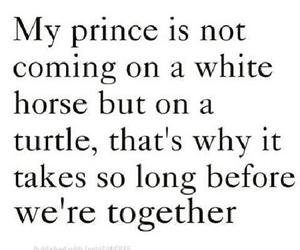 prince, love, and turtle image