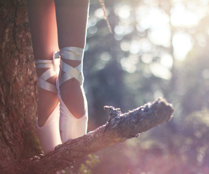 ballet, beautiful, and forest image