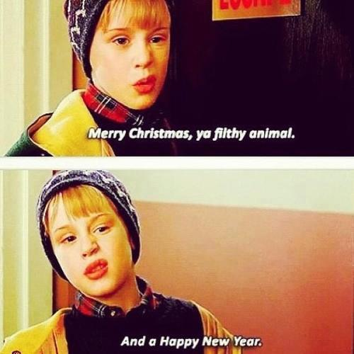 Merry Christmas Ya Filthy Animal And A Happy New Year.Merry Christmas Ya Filthy Animal And A Happy New Year
