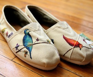 bird, shoes, and toms image