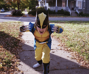 boy and wolverine image