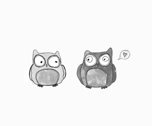 black and white, owl, and cute image