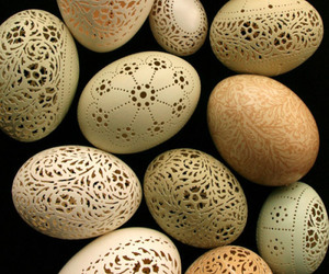 egg and lace image