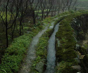 nature, path, and tumblr image