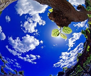 photography, nature, and sky image