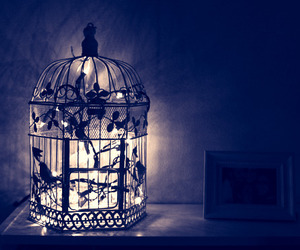 light, cage, and bird image