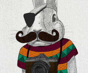 hipster, rabbit, and animal image