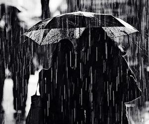 rain, girl, and photography image