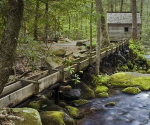 cabin, creek, and green image