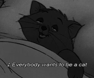 cat, disney, and quotes image