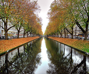 autumn, dusseldorf, and germany image