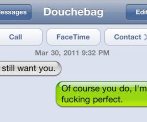 text, perfect, and funny image