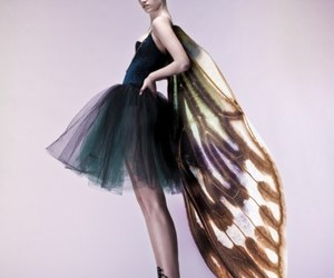 butterfly, dress, and fashion image