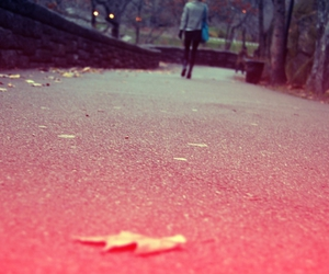 leaf, legs, and pavement image
