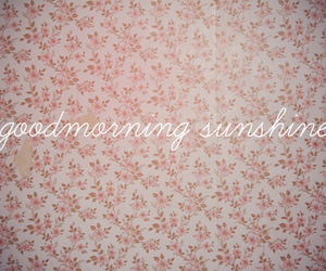 sunshine, morning, and text image
