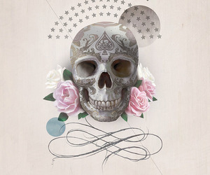 skull and illustration image