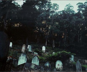 cemetery, death, and forest image