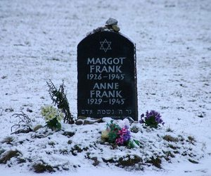 nazism, flowers, and holocaust image