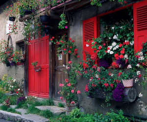 flowers, red, and house image