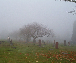 FraserView Cemetery