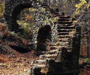 stairs, forest, and ruins image