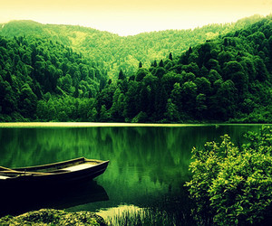 green, lake, and nature image