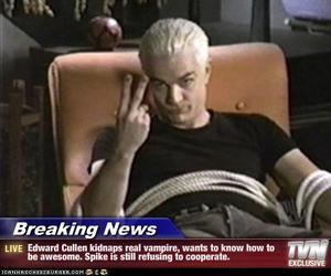 buffy, spike, and twilight image