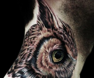 tattoo, owl, and neck image
