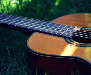 summer and my guitar image