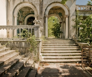 abandoned, beautiful, and ivy image