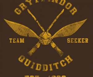 gryffindor, harry potter, and quidditch image