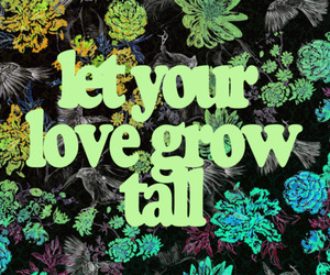 love, quote, and grow image
