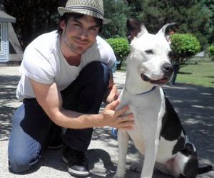 ian somerhalder, dog, and Hot image
