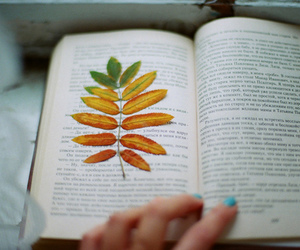 book, leaves, and tree image
