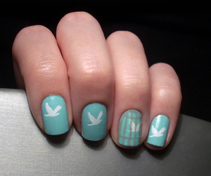 bird, cage, and nail art image