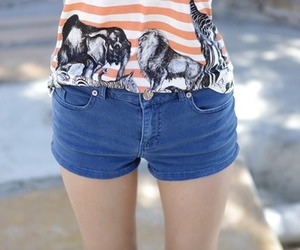 legs and shorts image