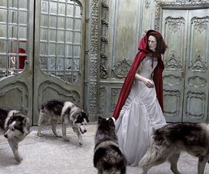 wolf, red riding hood, and red image