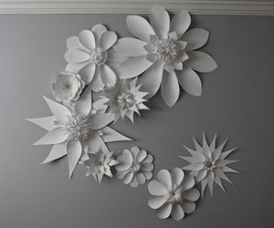flowers, white flowers, and white paper image