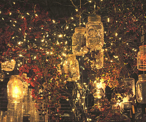 jars, lights, and faires image