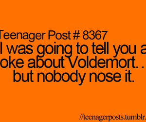 harry potter, hp, and voldemort image