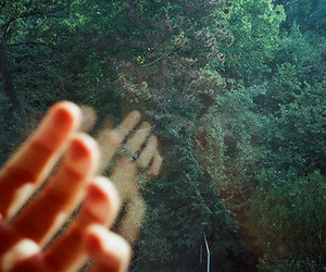 hand, green, and nature image