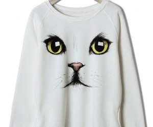sweater, cute, and cat image